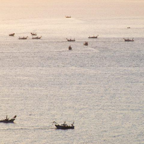 Pescatori di vongole