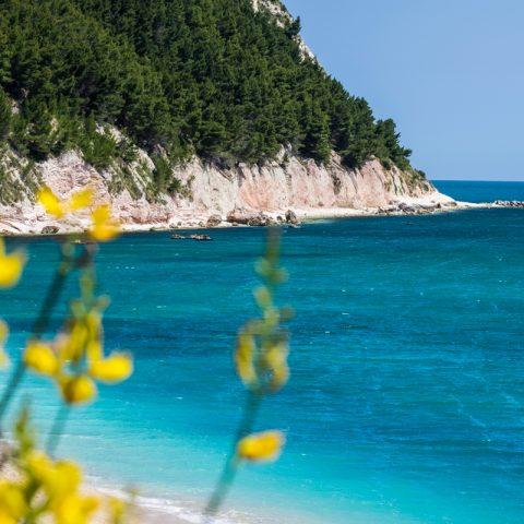 Spiaggia S.Michele